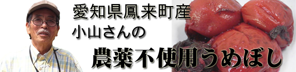 Koyamaume_banner1